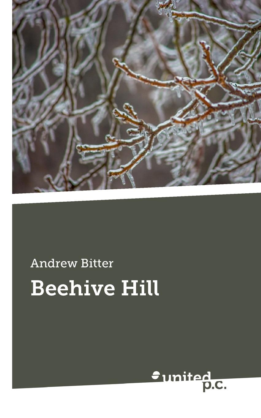 Andrew Bitter Beehive Hill andrew wyeth snow hill
