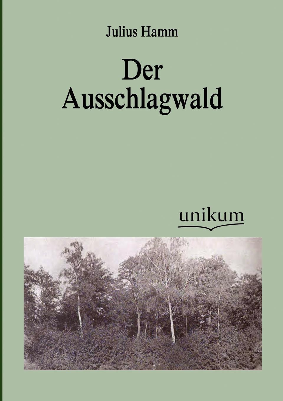 Julius Hamm Der Ausschlagwald julius von olivier was ist raum zeit bewegung masse was ist die erscheinungswelt