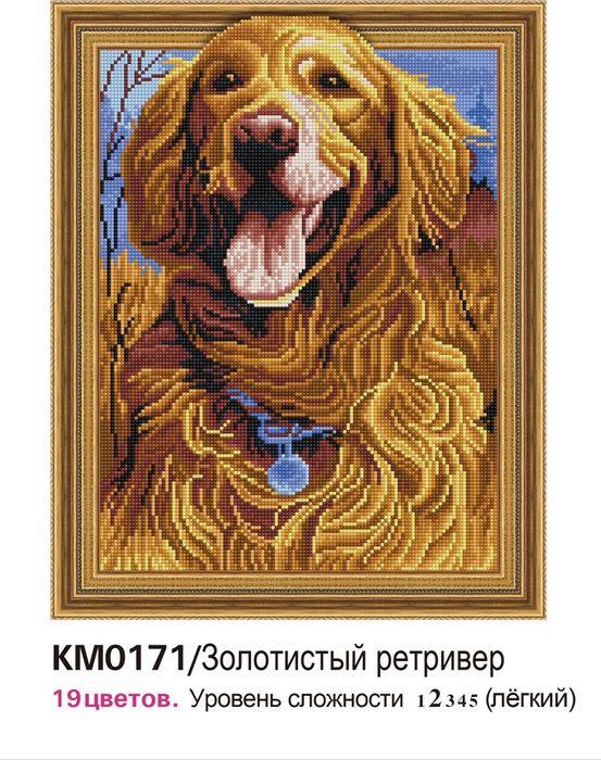 Алмазная мозаика Molly Золотистый ретривер, с рамкой, KM0171, 40 х 50 см