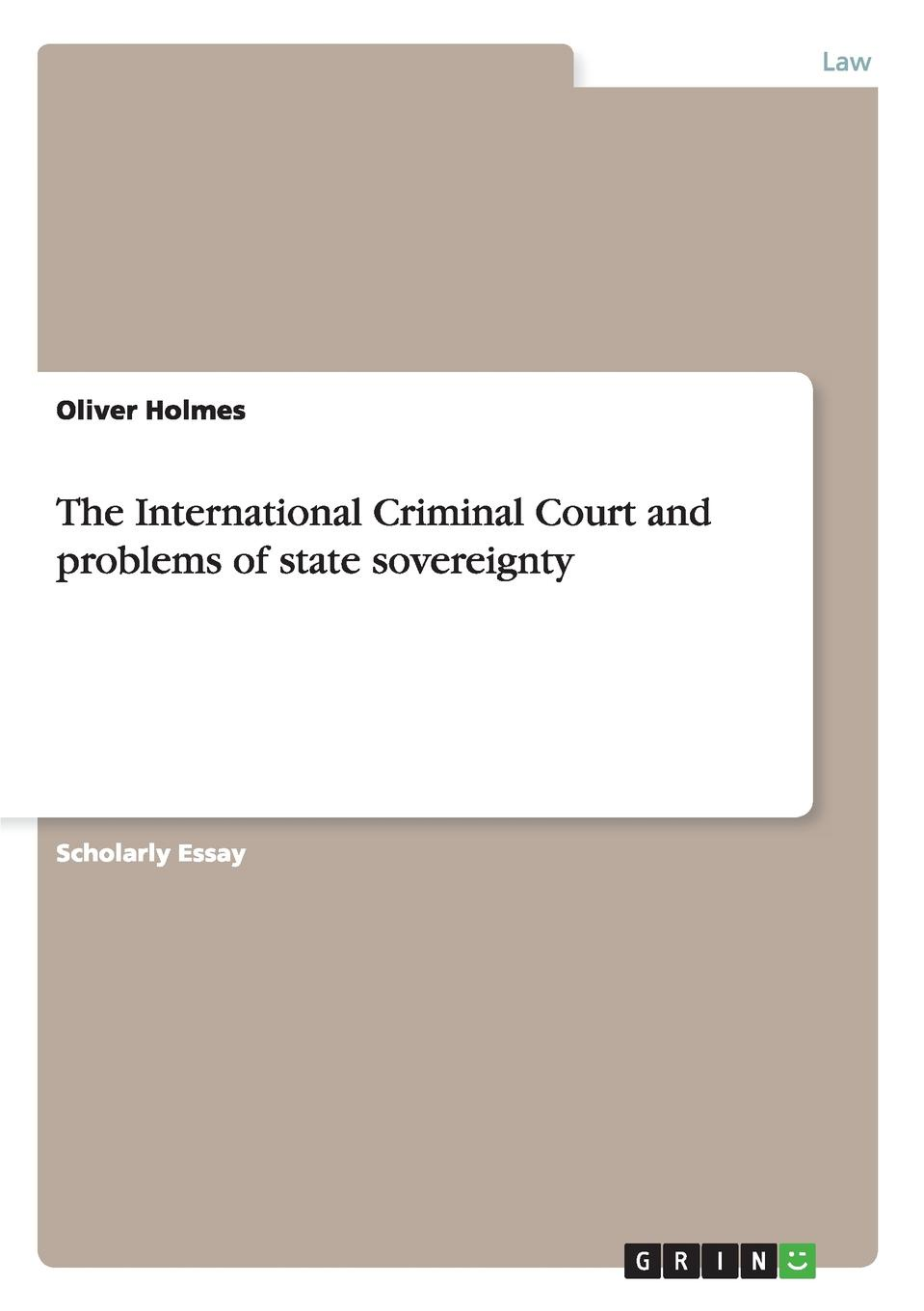 Oliver Holmes The International Criminal Court and problems of state sovereignty edited by alison dunn the voluntary sector the state and the law