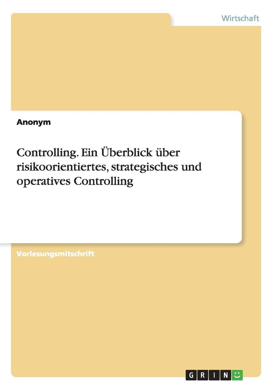 Controlling. Ein Uberblick uber risikoorientiertes, strategisches und operatives Controlling Vorlesungsmitschrift aus dem Jahr 2008 im Fachbereich BWL...