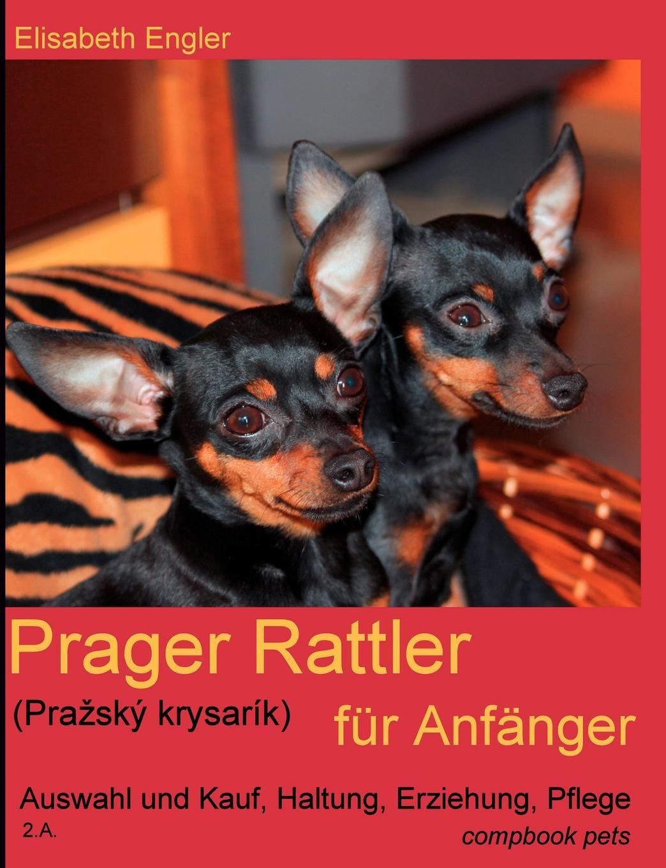 Elisabeth Engler Prager Rattler (Pra Sk Krysar K) Fur Anf Nger lisa von wachter das elektroauto ein zukunftsmodell fur jeden in deutschland