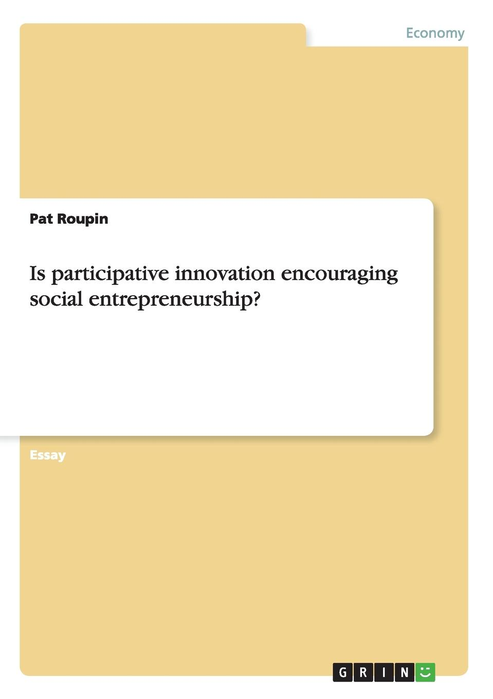 Pat Roupin Is participative innovation encouraging social entrepreneurship. dee mccrorey innovation in a reinvented world 10 essential elements to succeed in the new world of business