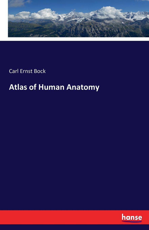 Carl Ernst Bock Atlas of Human Anatomy atlas of anatomy page 8