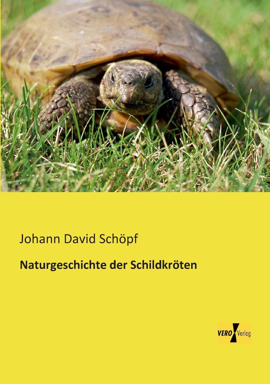 Johann David Schopf Naturgeschichte Der Schildkroten die haferhorde flausen im schopf