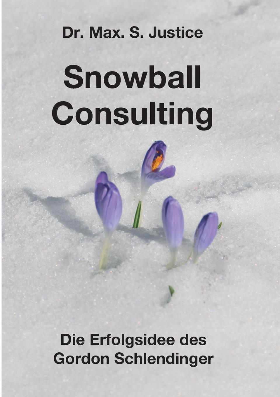 Dr. Max. S. Justice Snowball Consulting