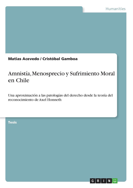 Matias Acevedo, Cristóbal Gamboa Amnistia, Menosprecio y Sufrimiento Moral en Chile idelbrando romero penna la ley en el tiempo y en el espacio e interpretacion de la ley
