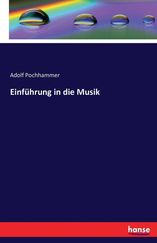 Einfuhrung in die Musik