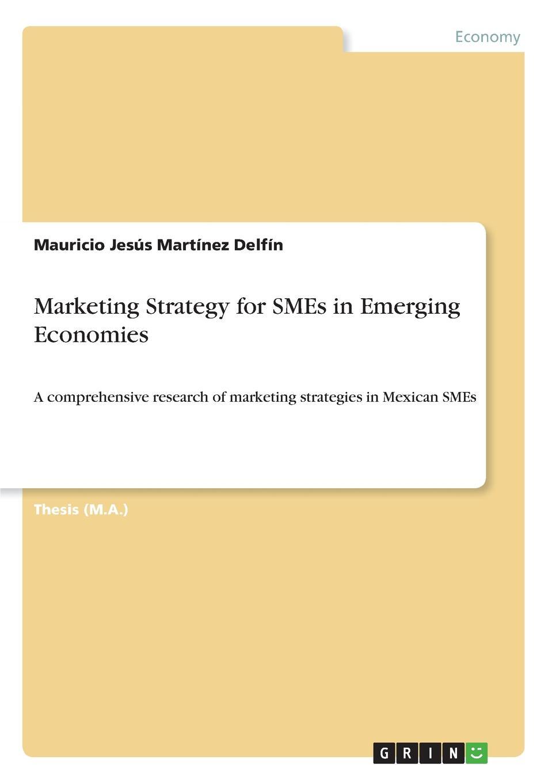 Mauricio Jesús Martínez Delfín Marketing Strategy for SMEs in Emerging Economies socio economic determinants of performance of smes
