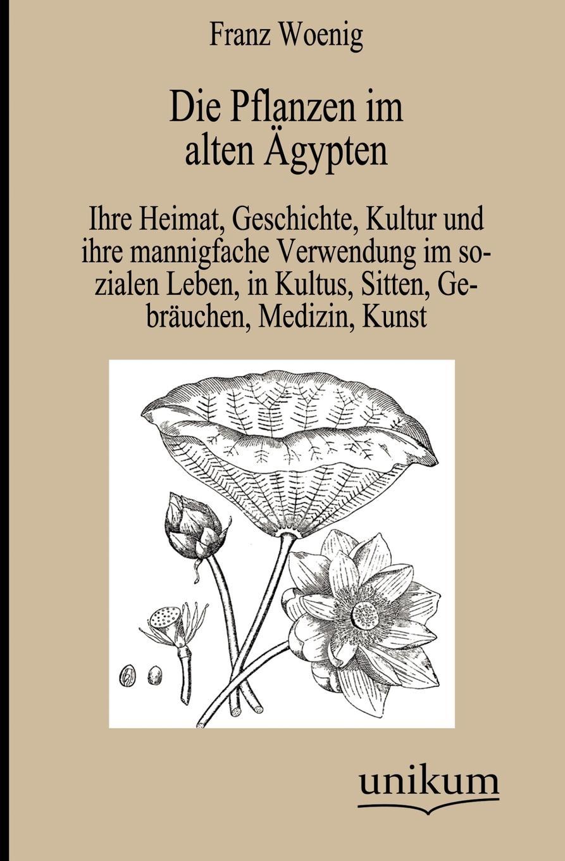 Franz Woenig Die Pflanzen im alten Agypten wilhelm spiegelberg die novelle im alten agypten