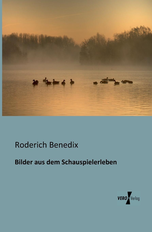 Roderich Benedix Bilder Aus Dem Schauspielerleben roderich benedix die hochzeitsreise lustspiel in zwei aufzugen german edition