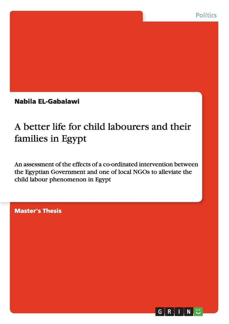 Nabila EL-Gabalawi A better life for child labourers and their families in Egypt amjad reba perception about ngo contribution towards education