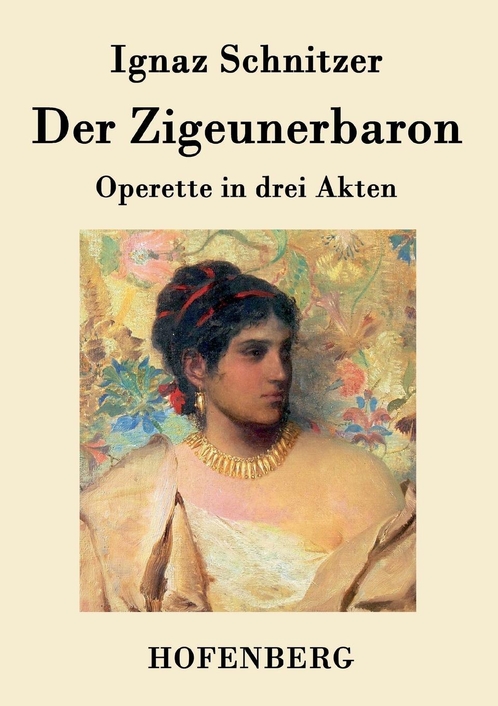Ignaz Schnitzer Der Zigeunerbaron katrin strauß die diktatur der optimisten