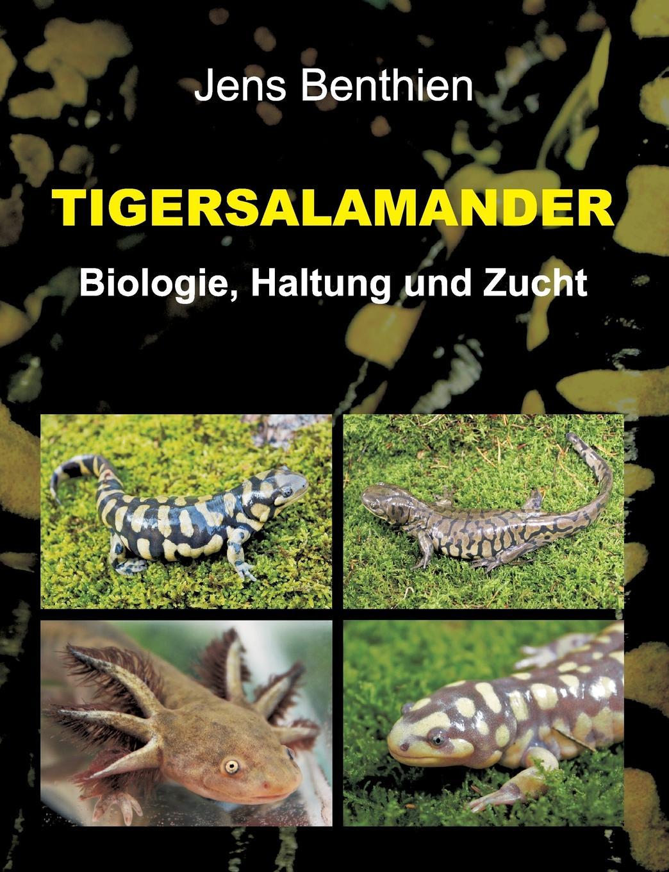 цена Jens Benthien Tigersalamander онлайн в 2017 году