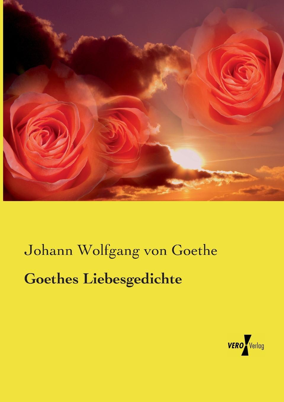 Johann Wolfgang von Goethe Goethes Liebesgedichte klaus ludwig hohn darstellung und deutung der bildenden kunst der antike in den romischen elegien von johann wolfgang von goethe