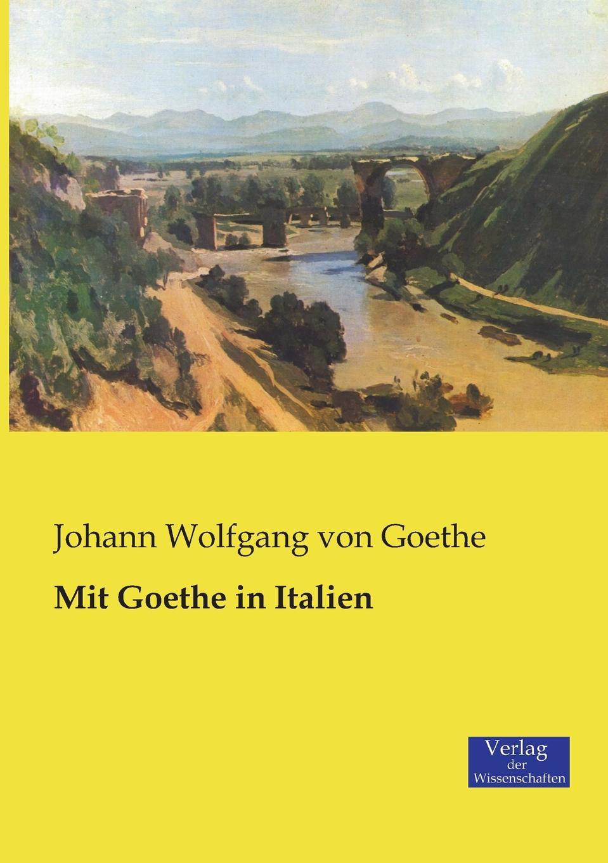 Johann Wolfgang von Goethe Mit Goethe in Italien klaus ludwig hohn darstellung und deutung der bildenden kunst der antike in den romischen elegien von johann wolfgang von goethe