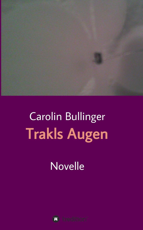 Carolin Bullinger Trakls Augen georg trakl im winter