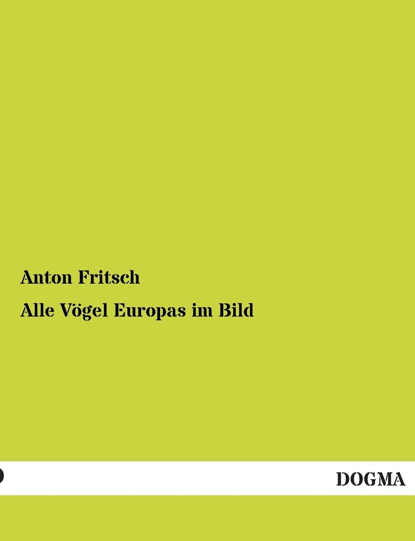 Anton Fritsch Alle Vogel Europas Im Bild bernhard vogel anton rubinstein