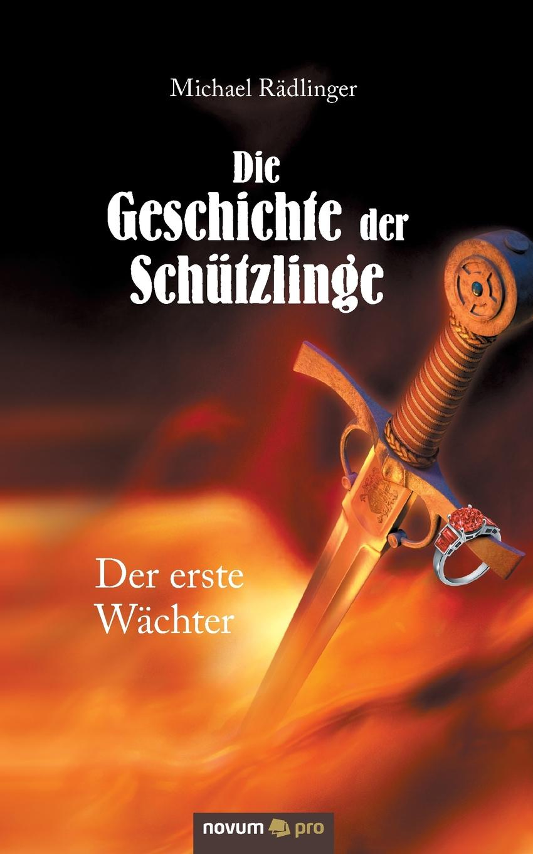 Michael Rädlinger Die Geschichte der Schutzlinge ponyherz in gefahr