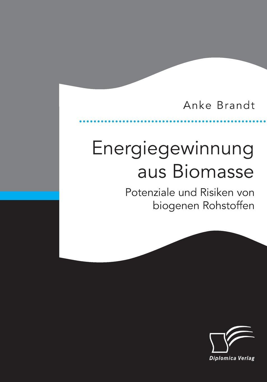 Anke Brandt Energiegewinnung aus Biomasse. Potenziale und Risiken von biogenen Rohstoffen peter roschmann kraftstoffe aus fossilen und regenerativen quellen