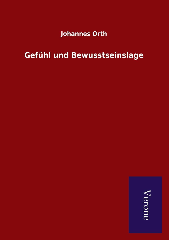 Johannes Orth Gefuhl und Bewusstseinslage