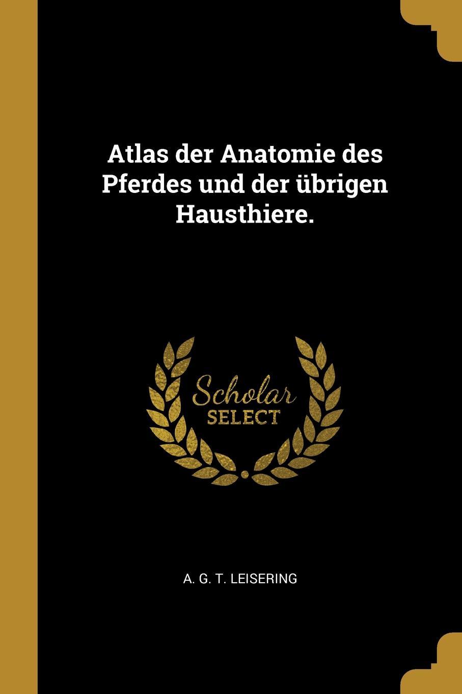 Atlas der Anatomie des Pferdes und der ubrigen Hausthiere.