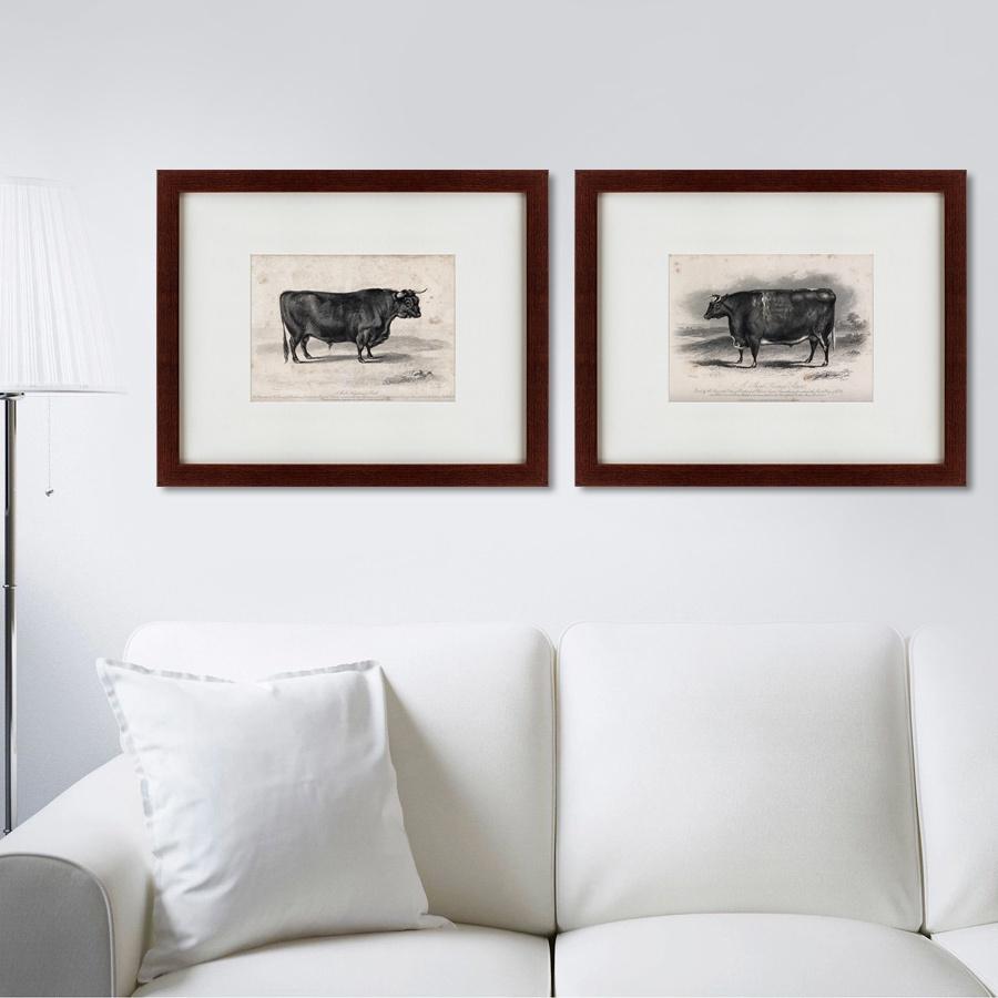 Картина Картины В Квартиру Коллекция A short horned steers (из 2-х картин), Бумага