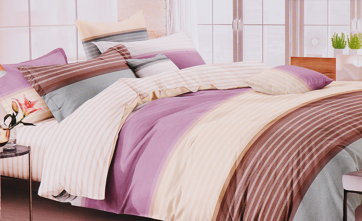 Комплект постельного белья Василиса Онегин, 193311, разноцветный, евро, наволочки 70x70 комплект постельного белья ситрейд ac053 e 4 евро наволочки 4 шт