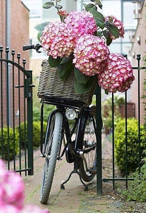 Фото день рождения велосипеда, для