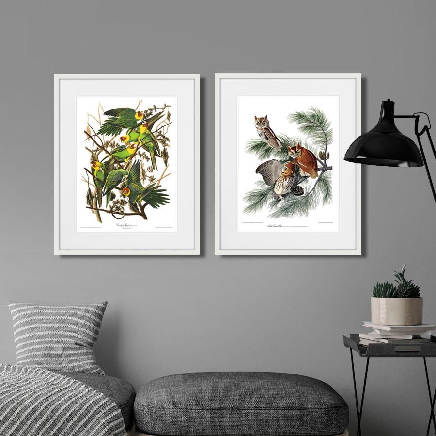 интересное постеры в домовом ооо лес воплощает