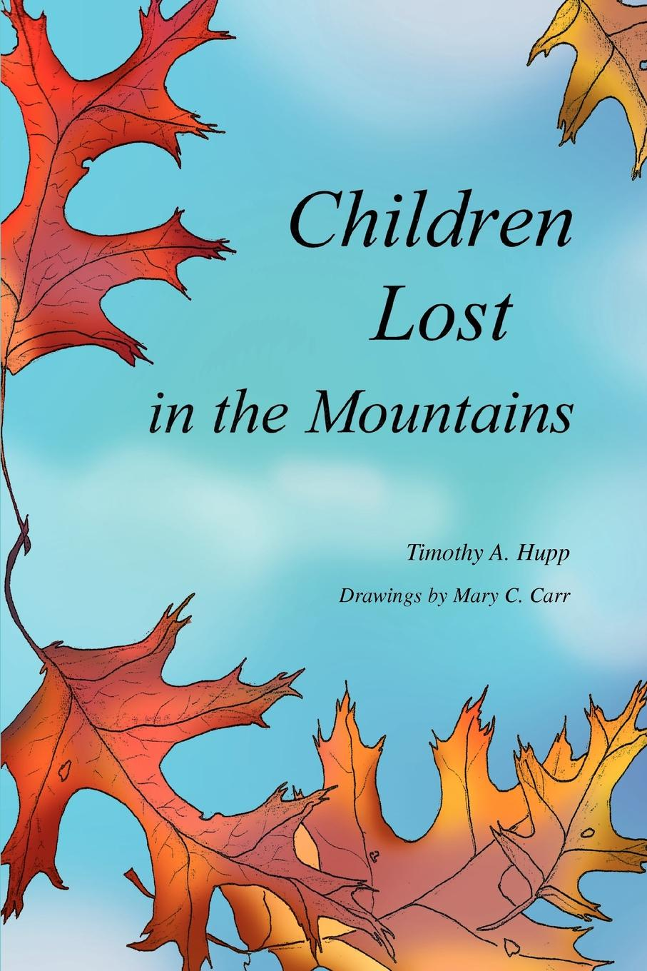 Timothy A. Hupp Children Lost in the Mountains hooked rugs today strong women flowers animals children christmas miniatures and more 2006