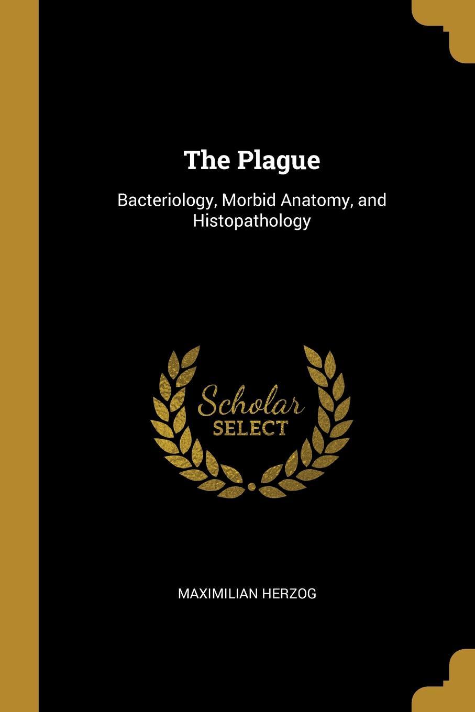 Maximilian Herzog The Plague. Bacteriology, Morbid Anatomy, and Histopathology histopathology