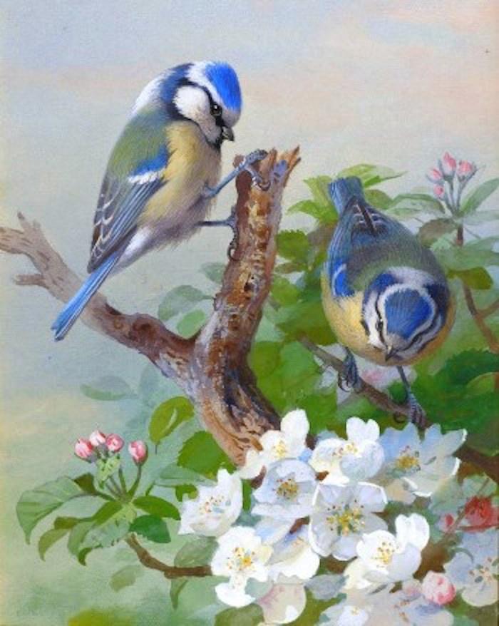 Открытки птички поют
