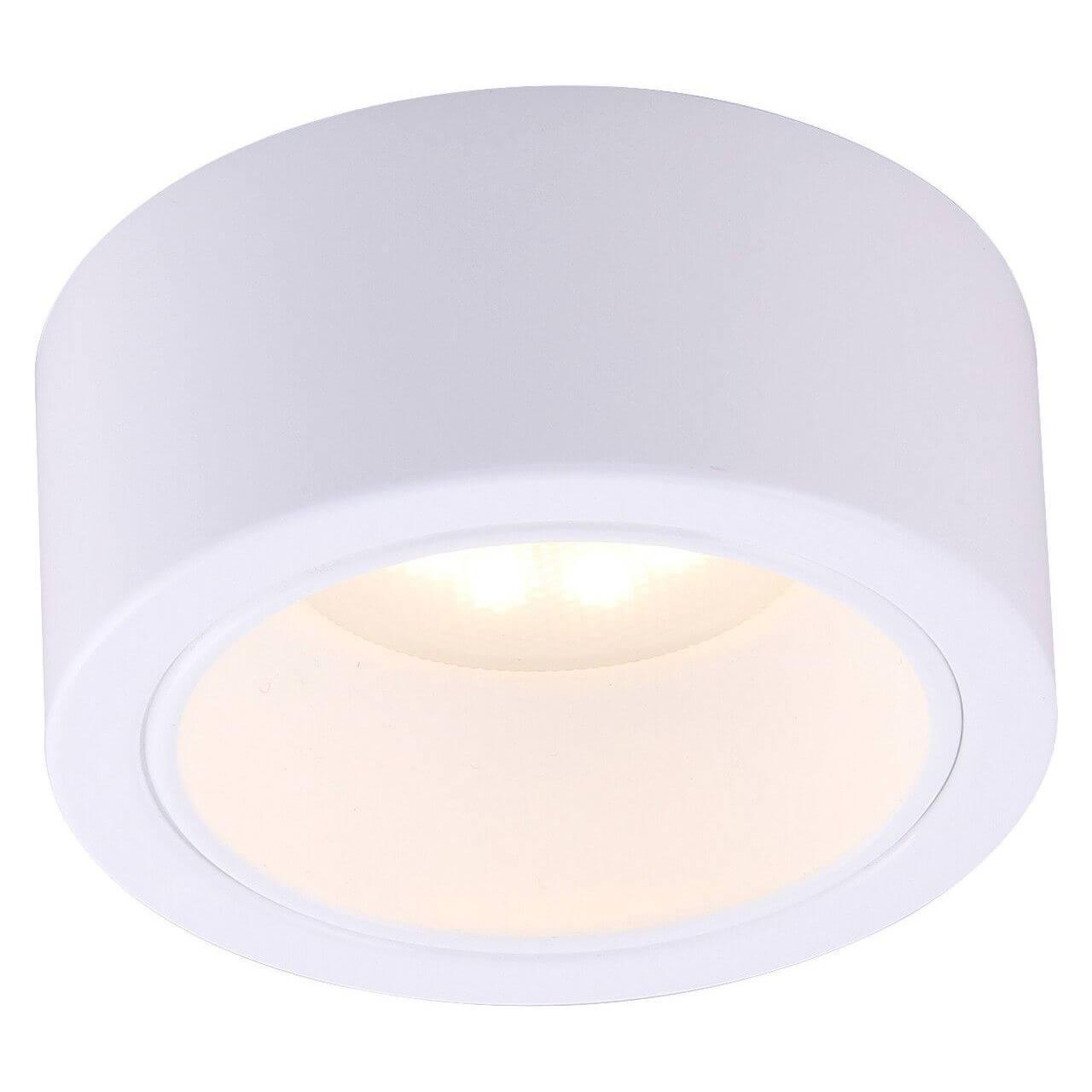 Потолочный светильник Arte Lamp A5553PL-1WH, белый стоимость