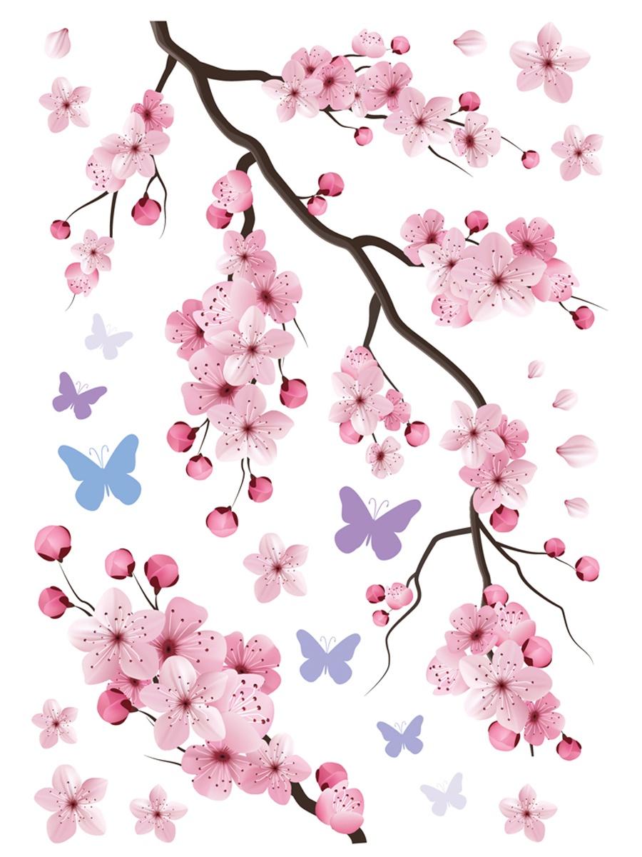 Картинка с сакурой распечатать