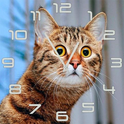 Настенные часы Kitch Clock 5502512