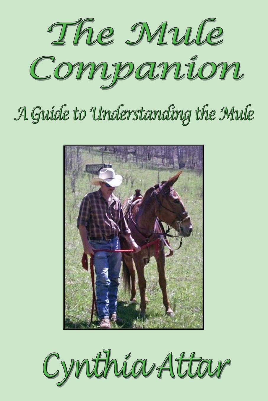 Cynthia Attar The Mule Companion. A Guide to Understanding the Mule rhinestone eye loafer mules