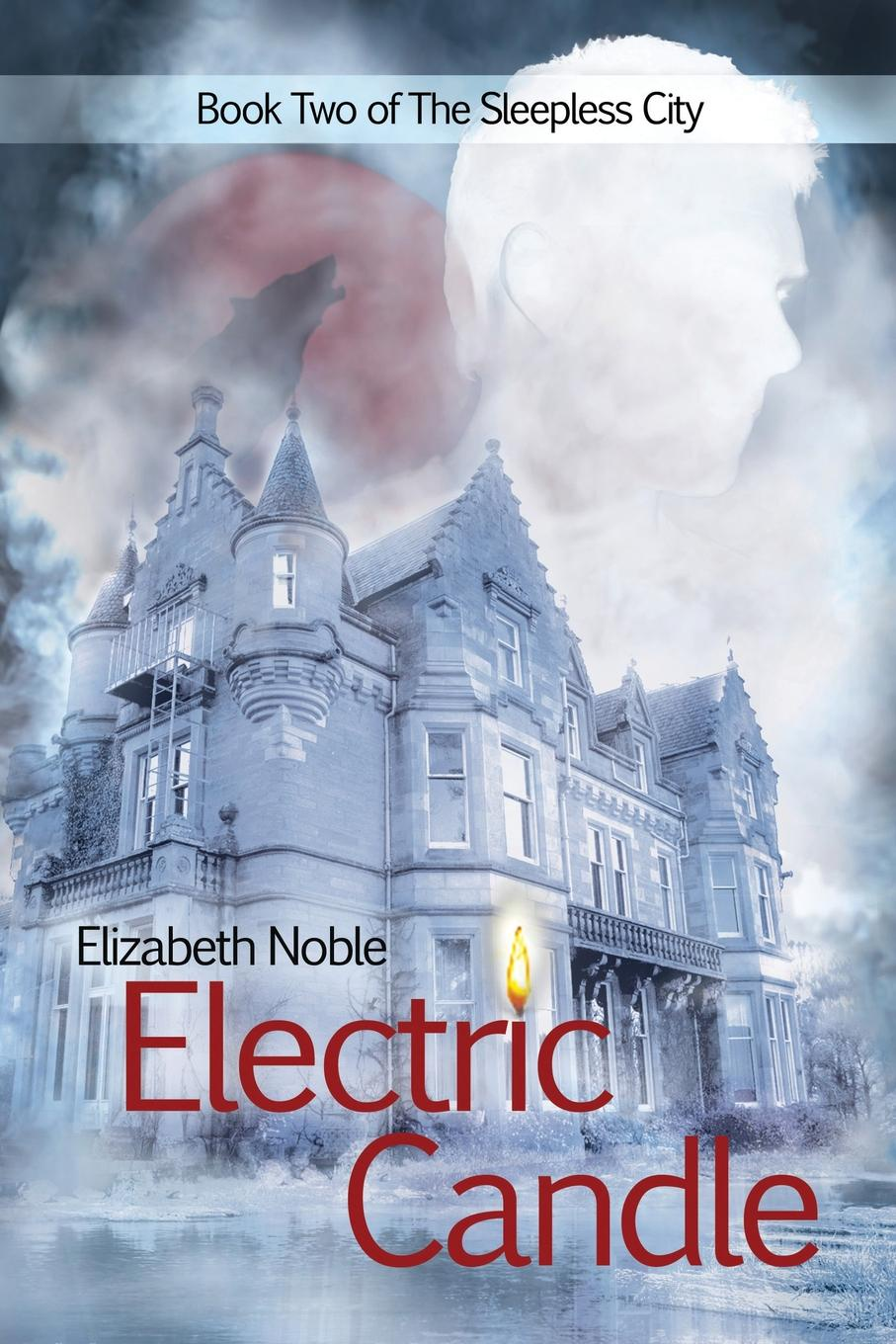 Elizabeth Noble Electric Candle the soul seekers fated