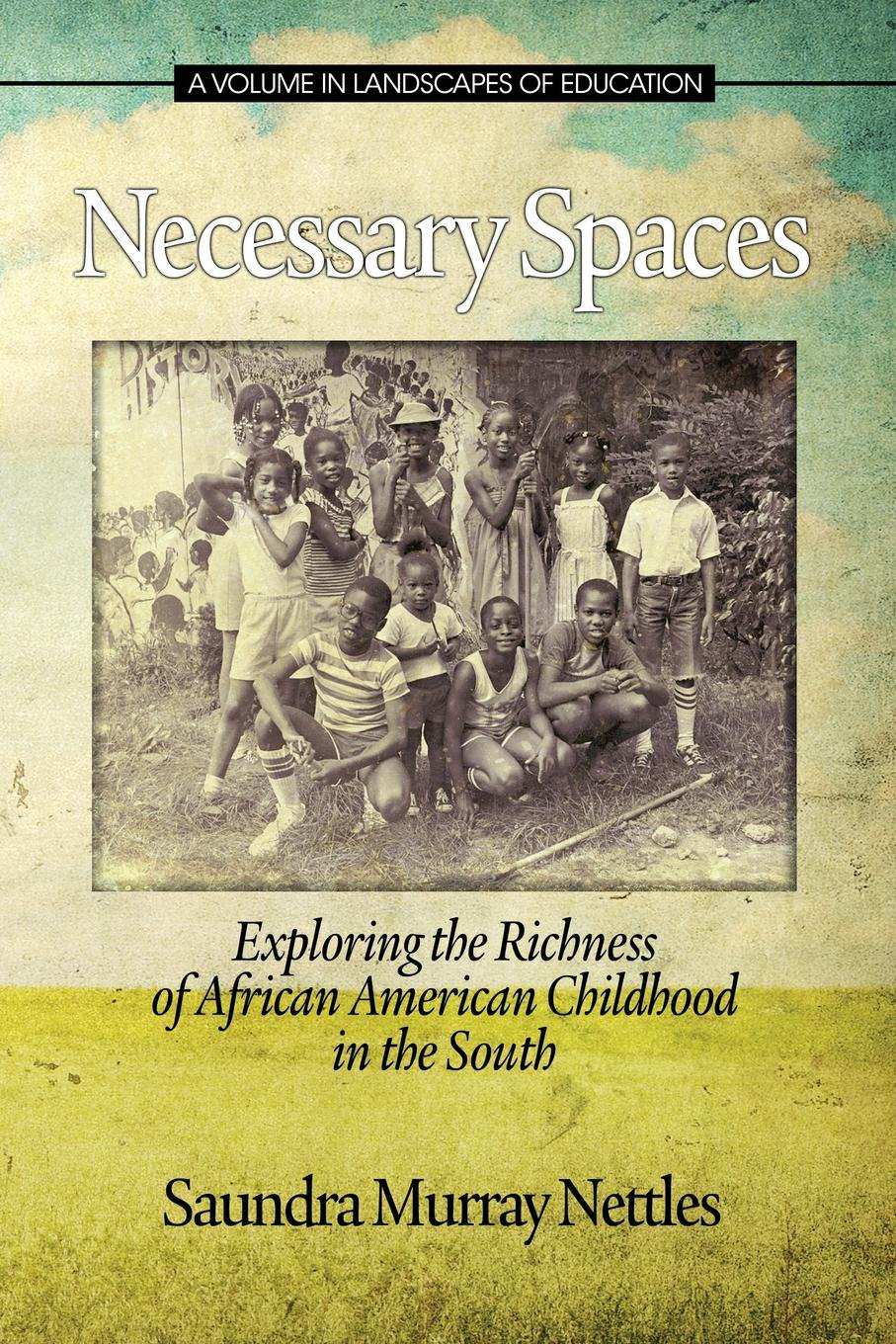 Saundra Murray Nettles Necessary Spaces. Exploring the Richness of African American Childhood in the South impact of water quality on community health in south west england