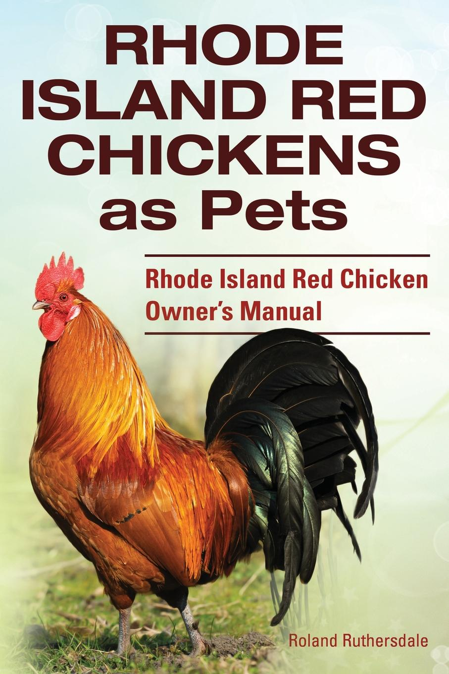 Roland Ruthersdale Rhode Island Red Chickens as Pets. Rhode Island Red Chicken Owner.s Manual earl leclaire timothy gilchrist ol swamper s rhode island shellfish clambake cookbook