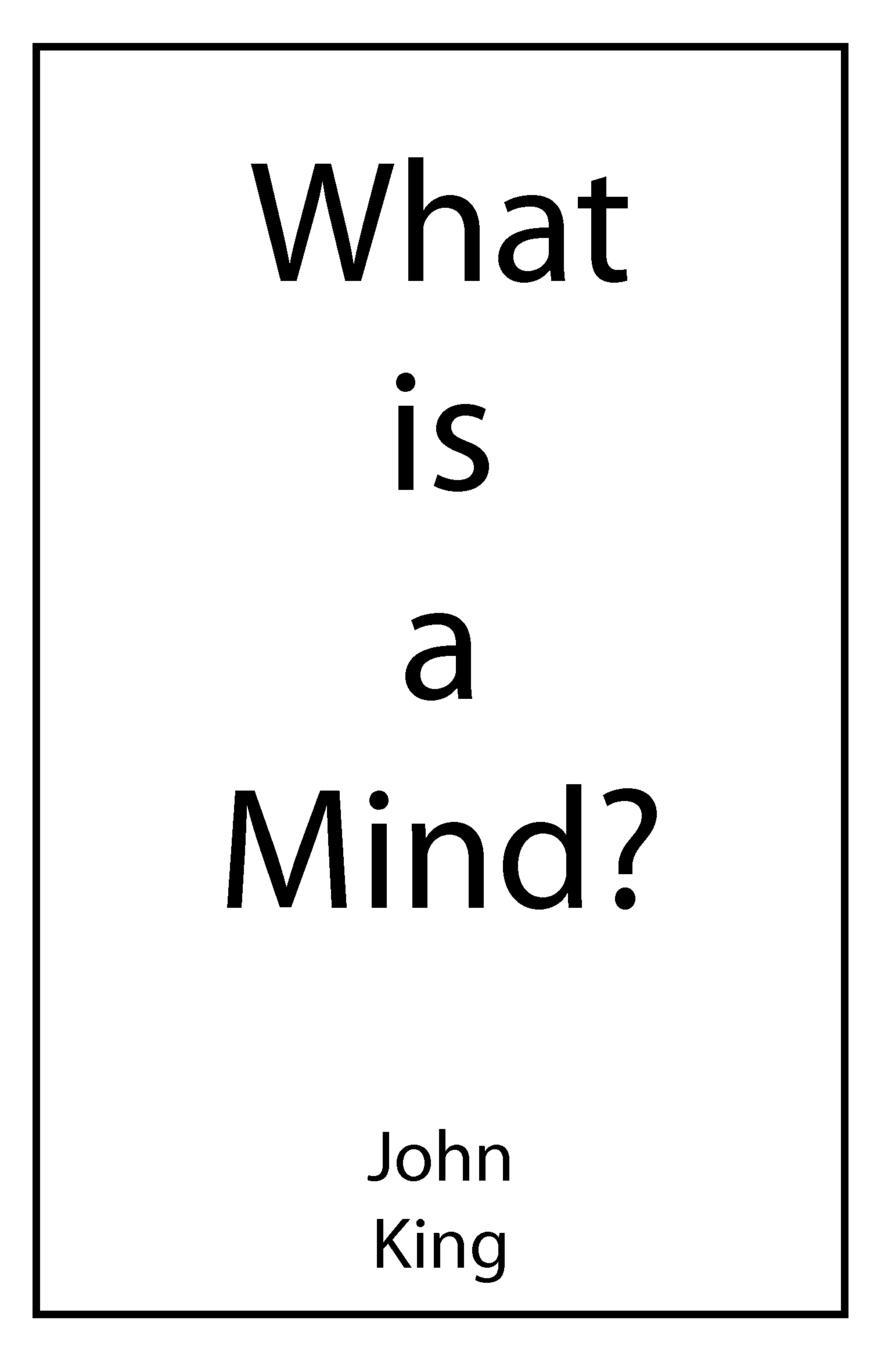 John King What is a Mind. multidimensional mind