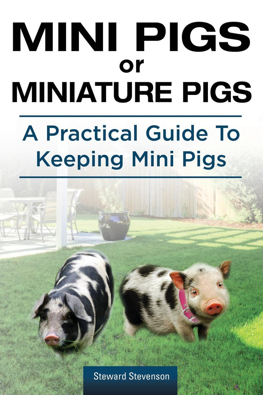 Steward Stevenson Mini Pigs or Miniature Pigs. A Practical Guide To Keeping Mini Pigs. the falco silver pigs