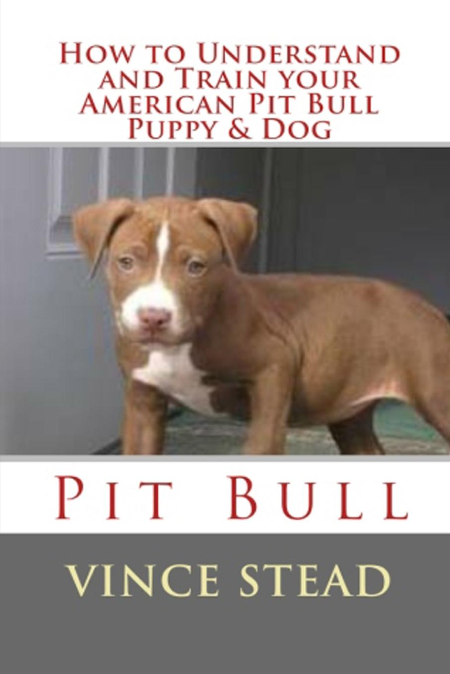 Vince Stead How to Understand and Train your American Pit Bull Puppy . Dog lacywear vok 8 pit