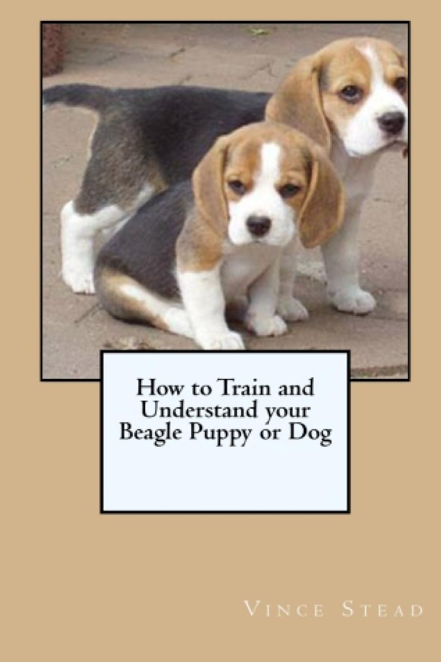 Vince Stead How to Train and Understand your Beagle Puppy or Dog how to teach your baby math