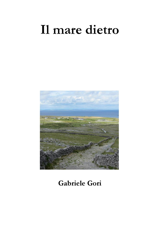 Gabriele Gori Il mare dietro нуриа риал марго ойтзингер мичи гайгг l orfeo barockorchester nuria rial haydn arie per un amante