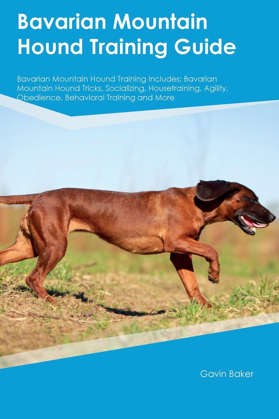 Phil Martin Bavarian Mountain Hound Training Guide Bavarian Mountain Hound Training Includes. Bavarian Mountain Hound Tricks, Socializing, Housetraining, Agility, Obedience, Behavioral Training and More gail martin gaymer bride in training