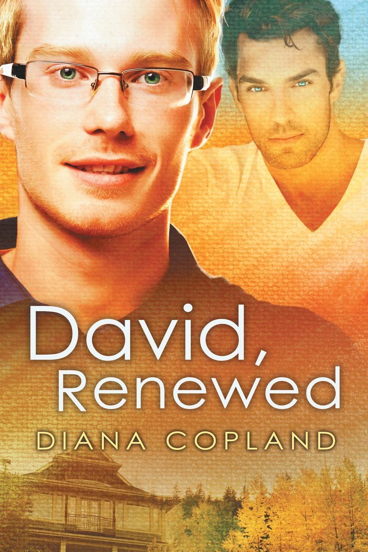 Diana Copland David, Renewed david kent ballast interior detailing concept to construction