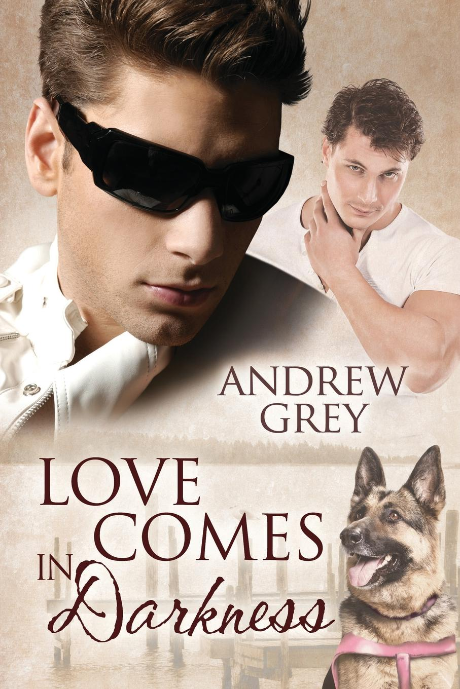 Фото - Andrew Grey Love Comes in Darkness howard evans sir randal cremer his life and work