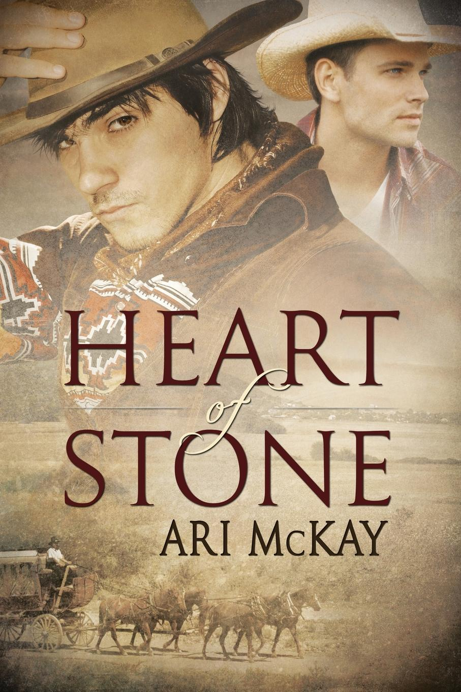 Ari McKay Heart of Stone lyn stone the doctor s mission