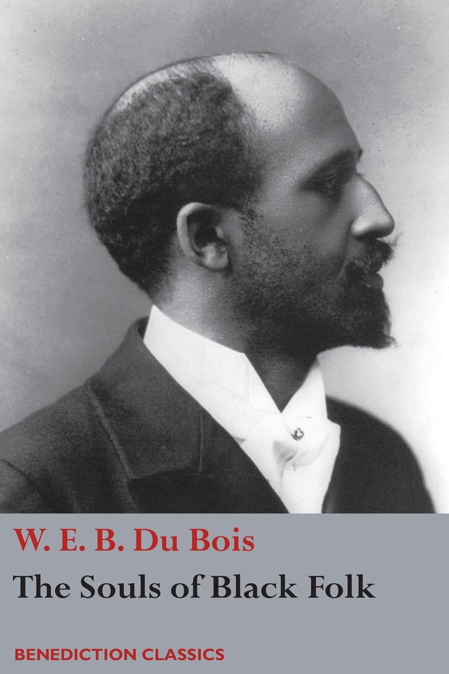 W. E. B. Du Bois The Souls of Black Folk frank turner and the sleeping souls lingen ems